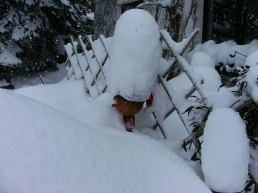 Winter Dezember2010 mit viel Schnee