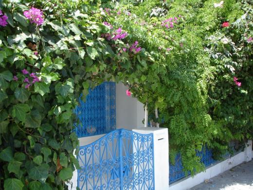 Tunesien - Impressionen 8