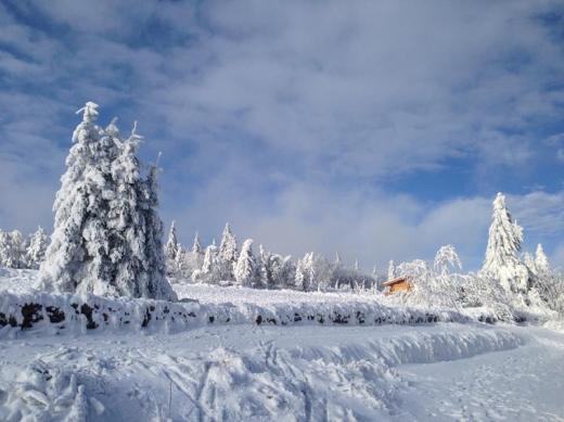 Winterzauber Zinnwald