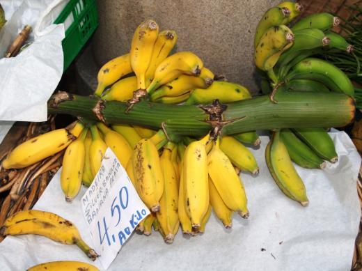 Madeira Bananen