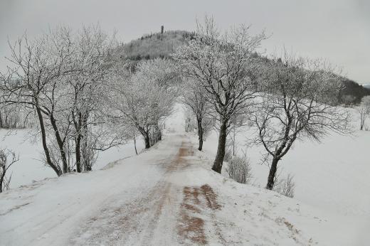 Geisingberg im Raureif
