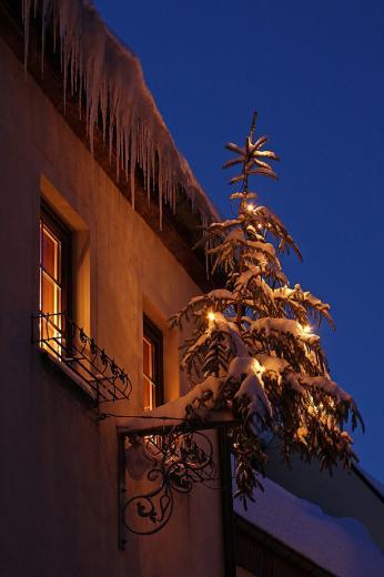 Der Baum bleibt draußen ...