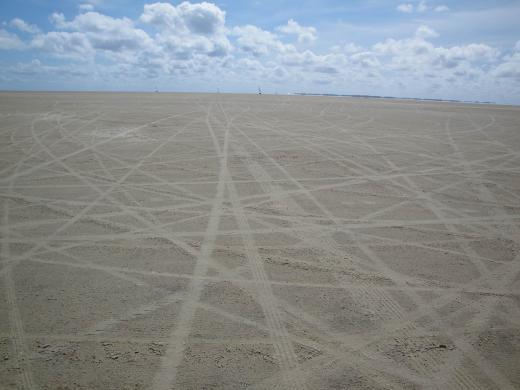 Strandsegler 5
