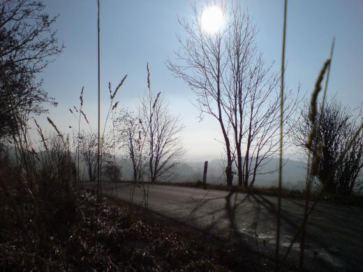 Nebelstimmung mit Sonne