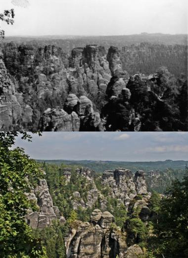 Sommer 1984 - Sommer 2011